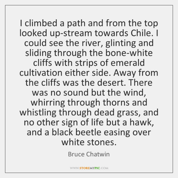 I climbed a path and from the top looked up-stream towards Chile. ...