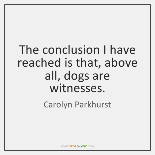 The conclusion I have reached is that, above all, dogs are witnesses.