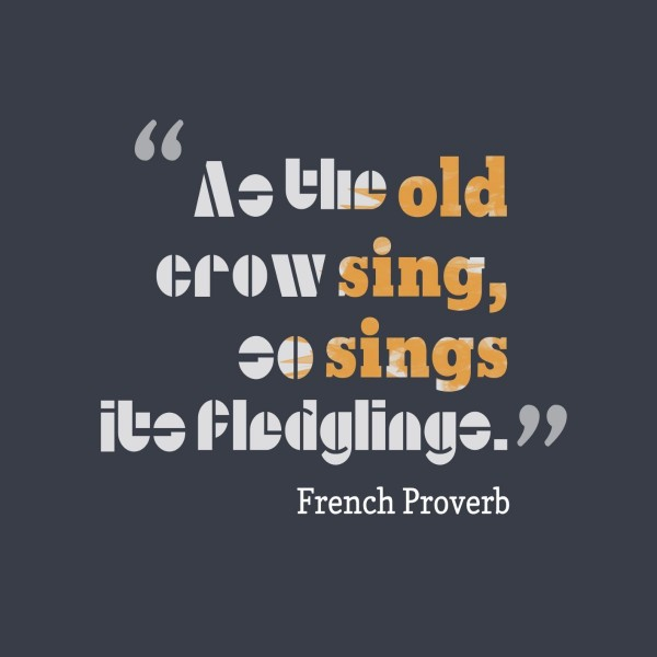 As the old corw sing go sings its fledling french proverb