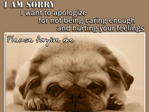 I am sorry i want to apologize for not being caring enough and hurting you feelings
