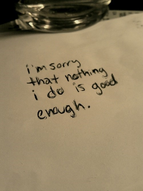 Im Sorry That Nothing I Do Is Good Enough Storemypic