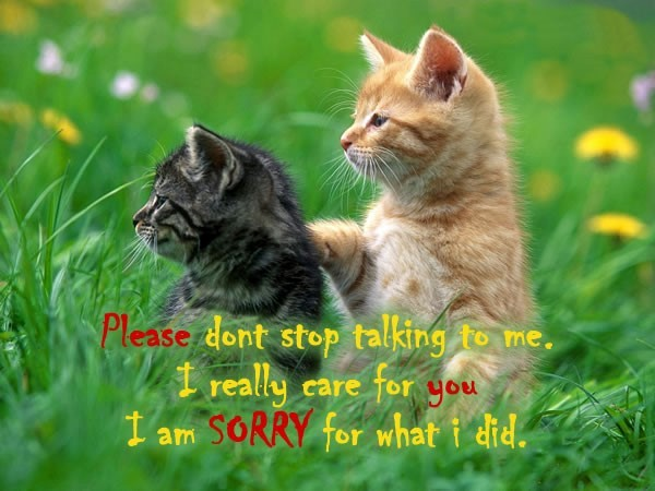 Please dont stop talking to me i relly care for you i am sorry for what i did