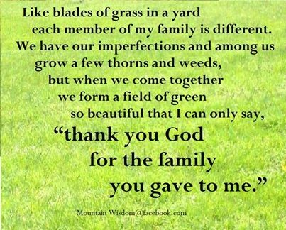 Like blades of grass in a yard each member of my family is different we have our imp