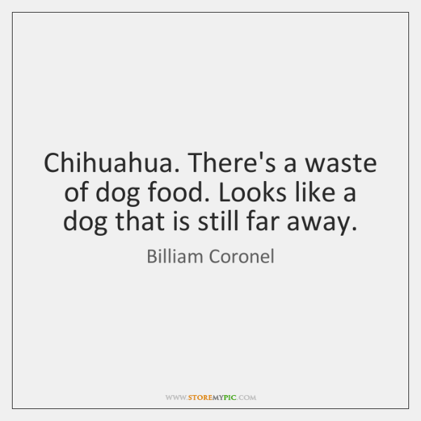 Chihuahua. There's a waste of dog food. Looks like a dog that ...