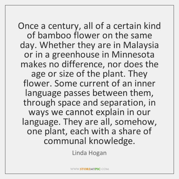 Once a century, all of a certain kind of bamboo flower on ...