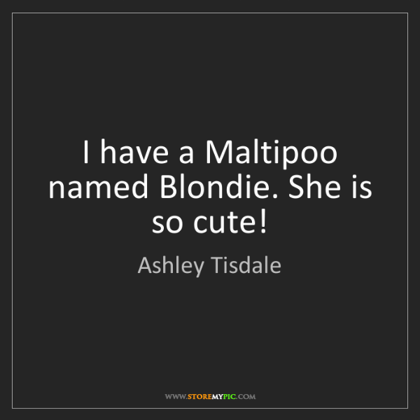 Ashley Tisdale: I have a Maltipoo named Blondie. She is so cute!