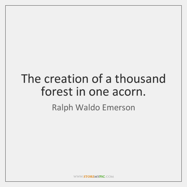 The creation of a thousand forest in one acorn.
