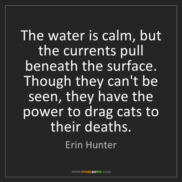 Erin Hunter: The water is calm, but the currents pull beneath the...