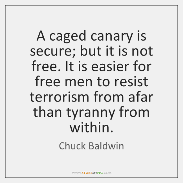 A caged canary is secure; but it is not free. It is ...