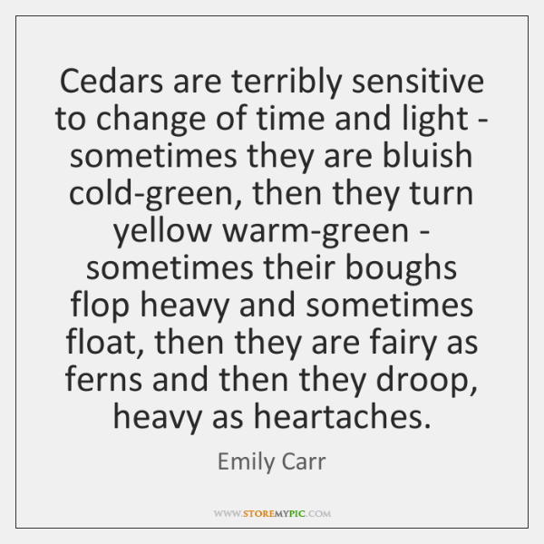 Cedars are terribly sensitive to change of time and light - sometimes ...