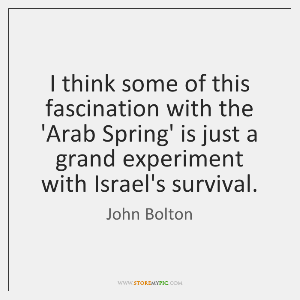 I think some of this fascination with the 'Arab Spring' is just ...