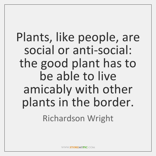 Plants, like people, are social or anti-social: the good plant has to ...