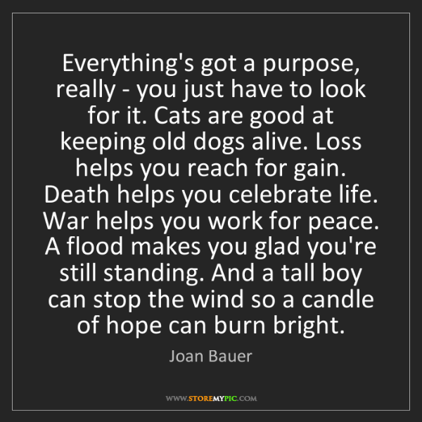 Joan Bauer: Everything's got a purpose, really - you just have to...