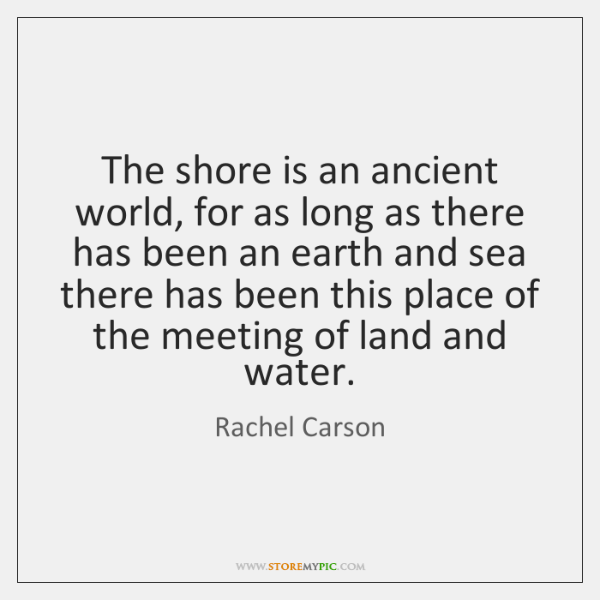 The shore is an ancient world, for as long as there has ...