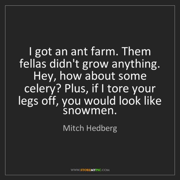Mitch Hedberg: I got an ant farm. Them fellas didn't grow anything....