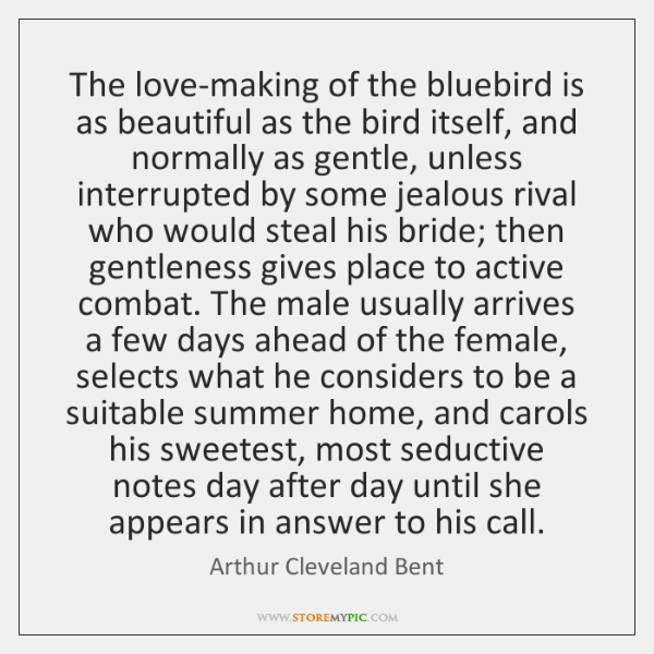The love-making of the bluebird is as beautiful as the bird itself, ...