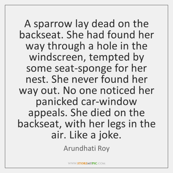 A sparrow lay dead on the backseat. She had found her way ...