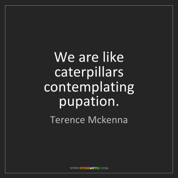 Terence Mckenna: We are like caterpillars contemplating pupation.