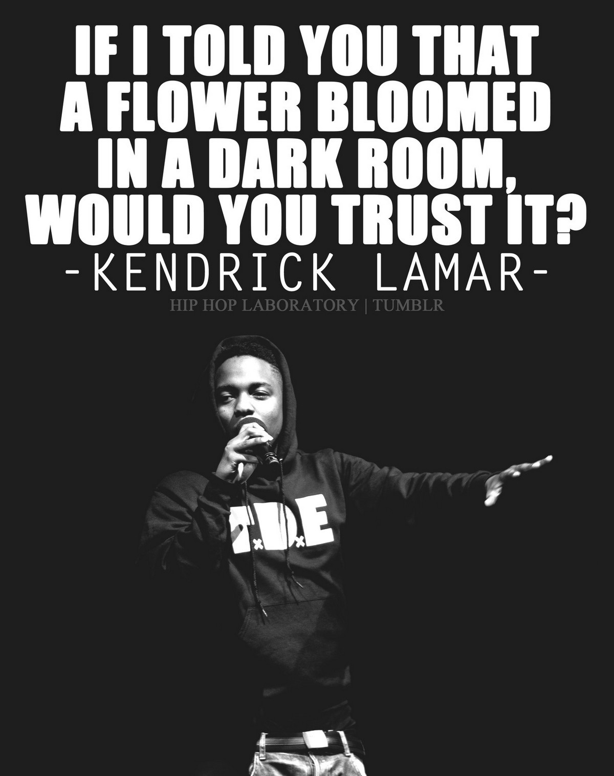 If i told you a flower bloomed in the dark