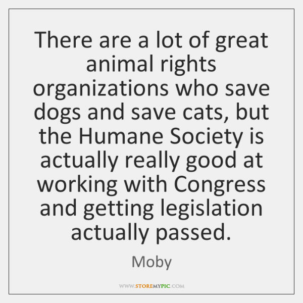 There are a lot of great animal rights organizations who save dogs ...
