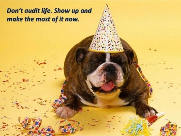 Dont audit life show up and make the most of it now