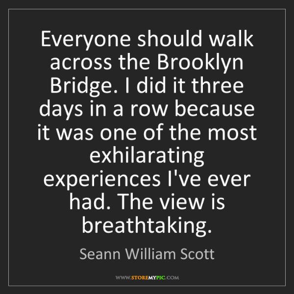 Seann William Scott: Everyone should walk across the Brooklyn Bridge. I did...