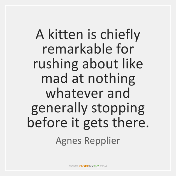 A kitten is chiefly remarkable for rushing about like mad at nothing ...
