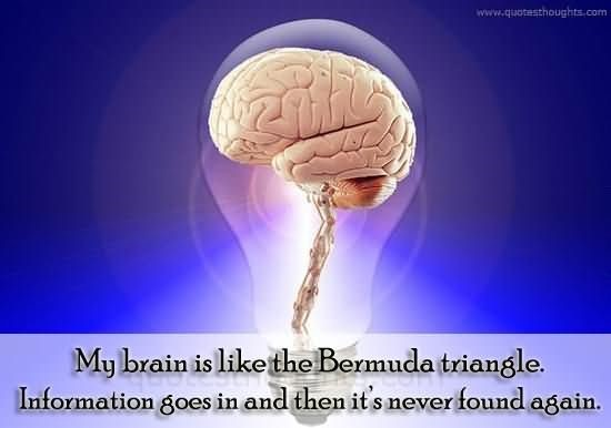 My brain is like the bermuda triangle information goes in and then its never found again
