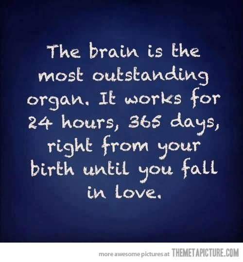 The brain is the most outstanding organ it works for 24 hours 365 days 001