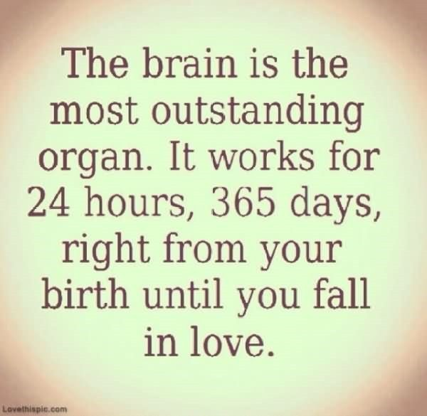 The brain is the most outstanding organ its works for 24hours 365 days right from your b
