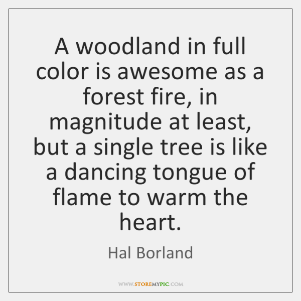 A woodland in full color is awesome as a forest fire, in ...