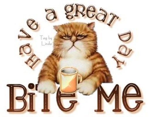 Have a great day bite me cat
