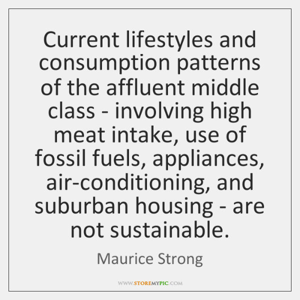 Current lifestyles and consumption patterns of the affluent middle class - involving ...