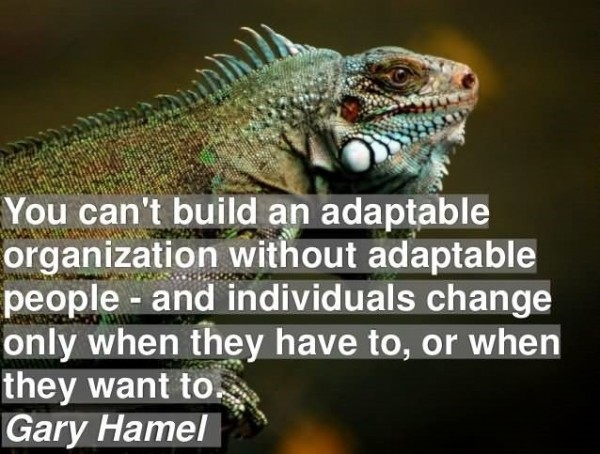 You cant build adaptable organization without adaptable people gary hamel