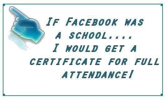 If facebook was a school i would get a certificate for full attendance
