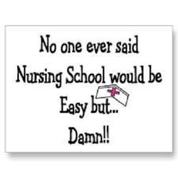 No One Ever Said Nursing School Would Be Easy But Damn Storemypic