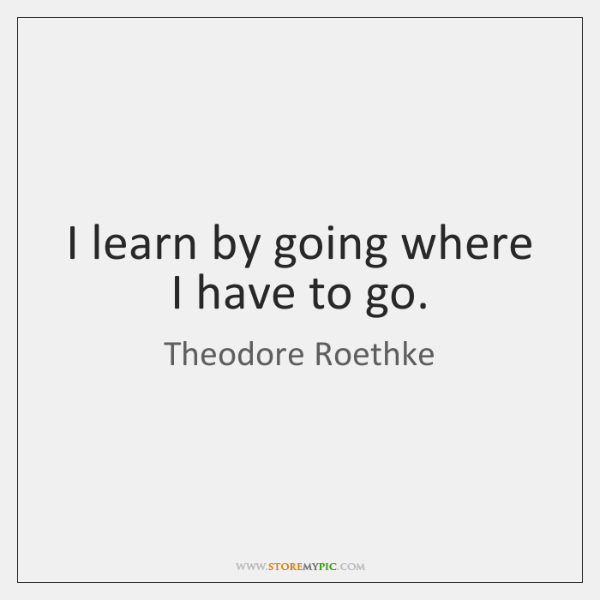 I learn by going where I have to go.