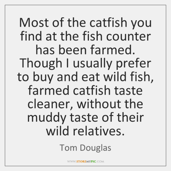 Most of the catfish you find at the fish counter has been ...