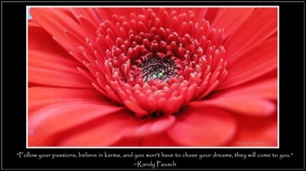 Follow your passion believe karma