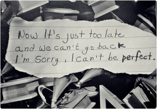 Now its just too late and we cant go back im sorry i cant be perfect