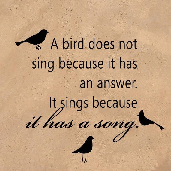 A bird does not sing because it has an answer it sings because it has a song