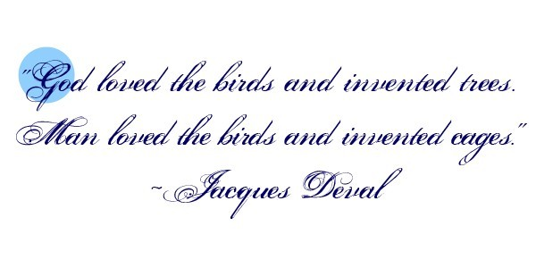 God loved the birds and invented trees man loved the birds and invented cages