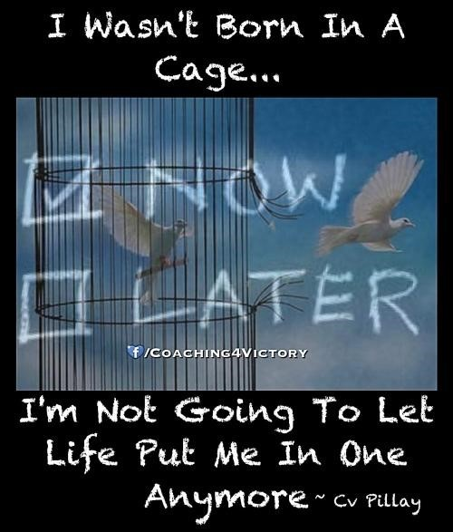 I wasnt born in a cage