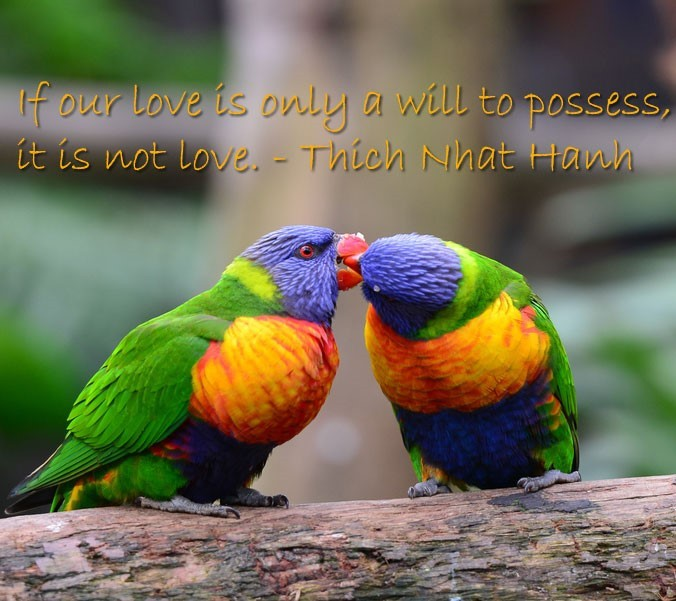 If Your Love Is Only A Will To Possess It Is Not Love Storemypic