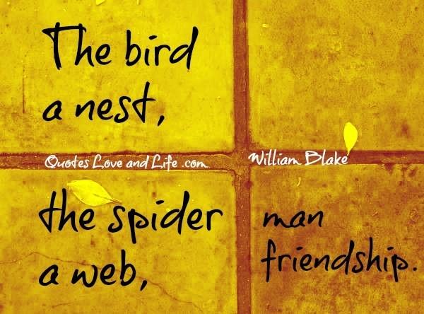 The bird a nest