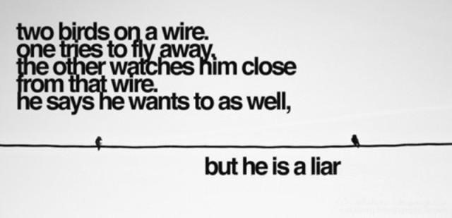 Two Birds One Wire Wire Center