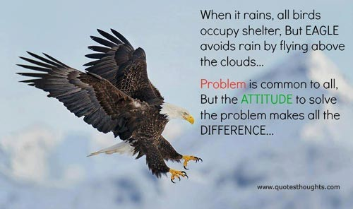 When it rains all birds occupy shelter but eagle avoids rain by flying above the clouds