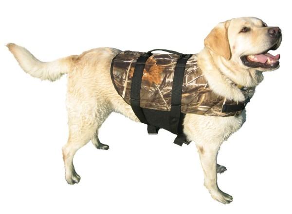 Camouflage dog with life jacket