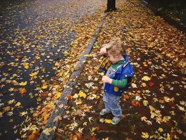 Enjoy the autumn season image