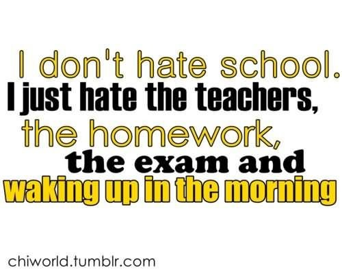 I dont hate school i just hate the teachers the homework the exam and waking up in the mo
